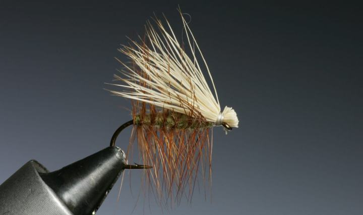 Elk Hair Caddis tied by Barry Ord Clarke
