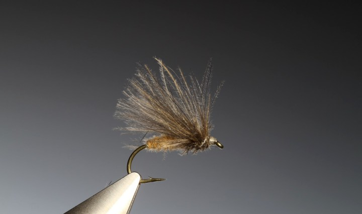 fly tying Marc Petitjean CdC techniques