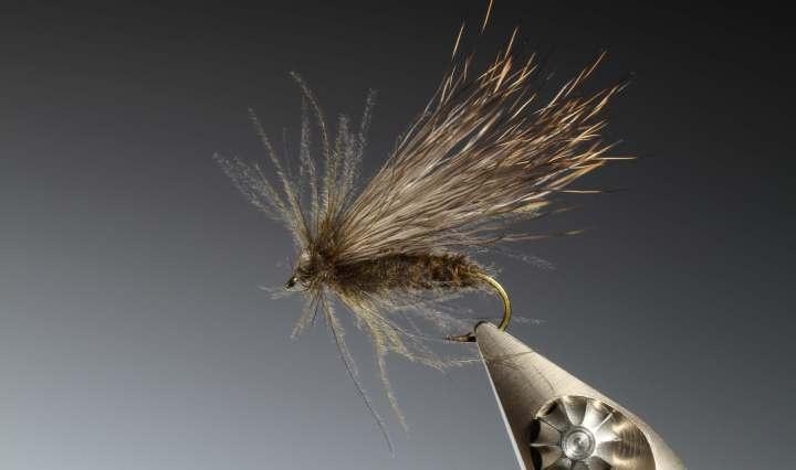 fly tying Marc Petitjean – CdC deer hair caddis