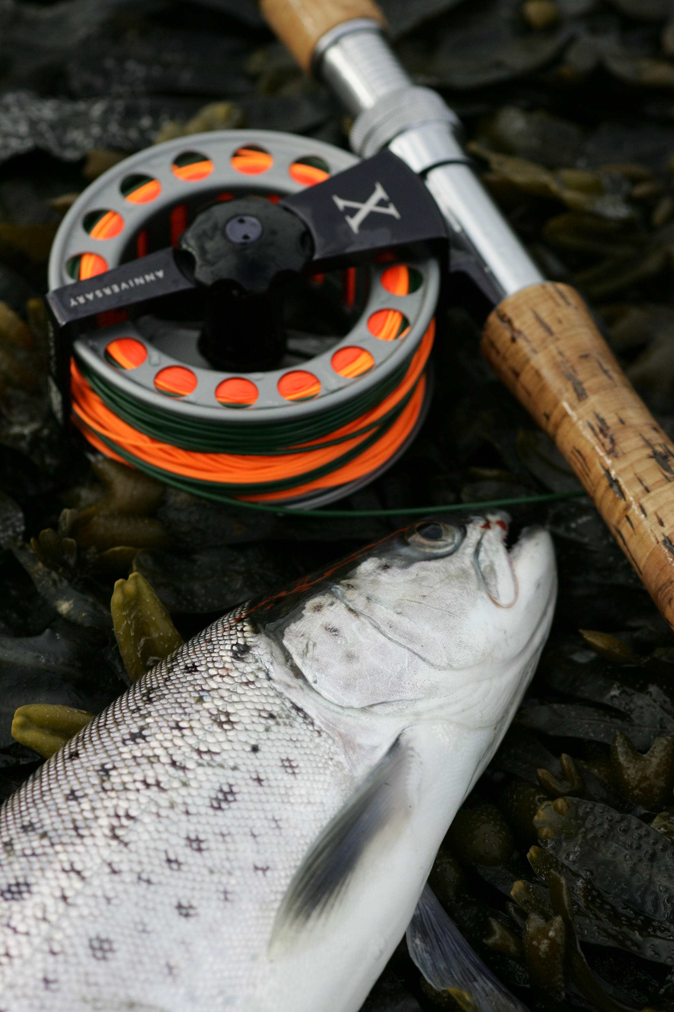 sea trout patterns for the autumn