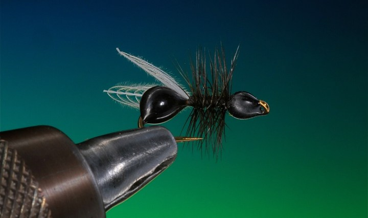 fly tying ant