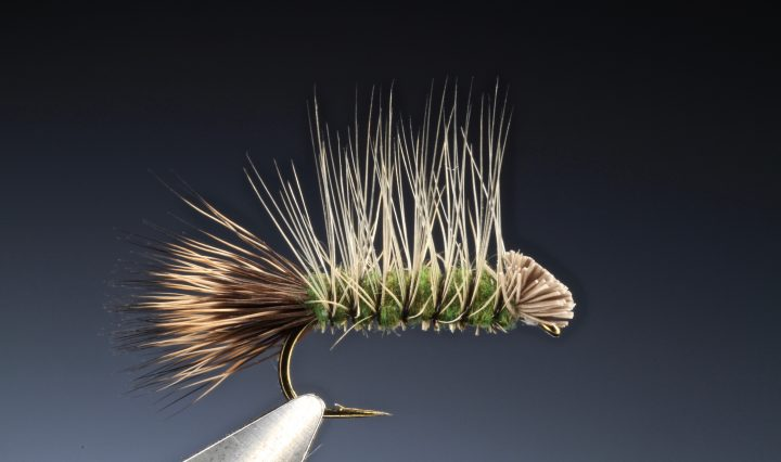 fly tying Tying the Dyret