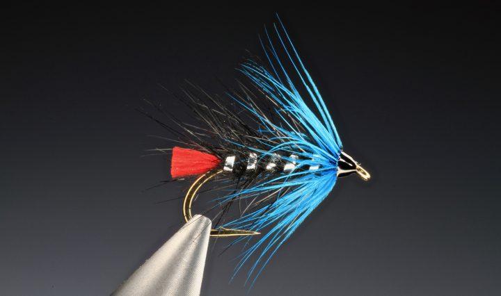 fly tying Zulu Blue wet fly