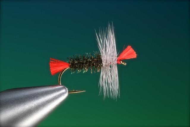 fly tying Bradshaw's Fancy grayling dry fly