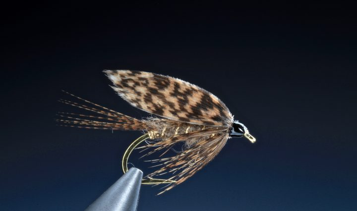 fly tying March Brown wet fly