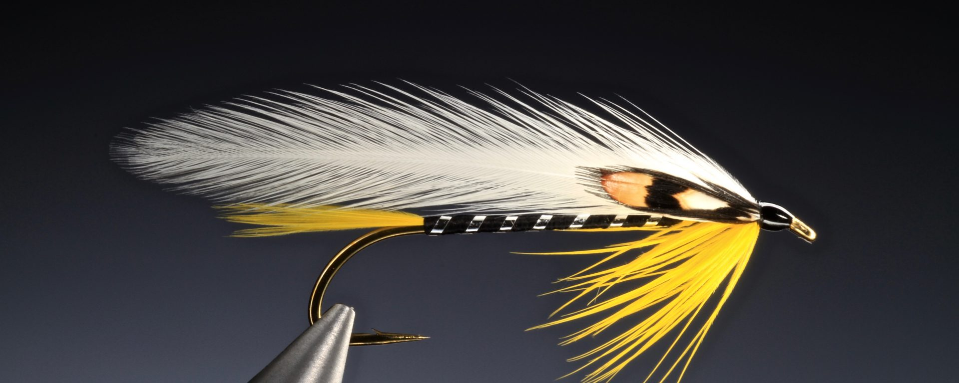 fly tying Black Ghost feather wing streamer