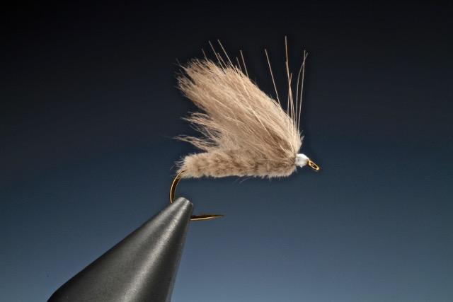 fly tying Beaver Caddis
