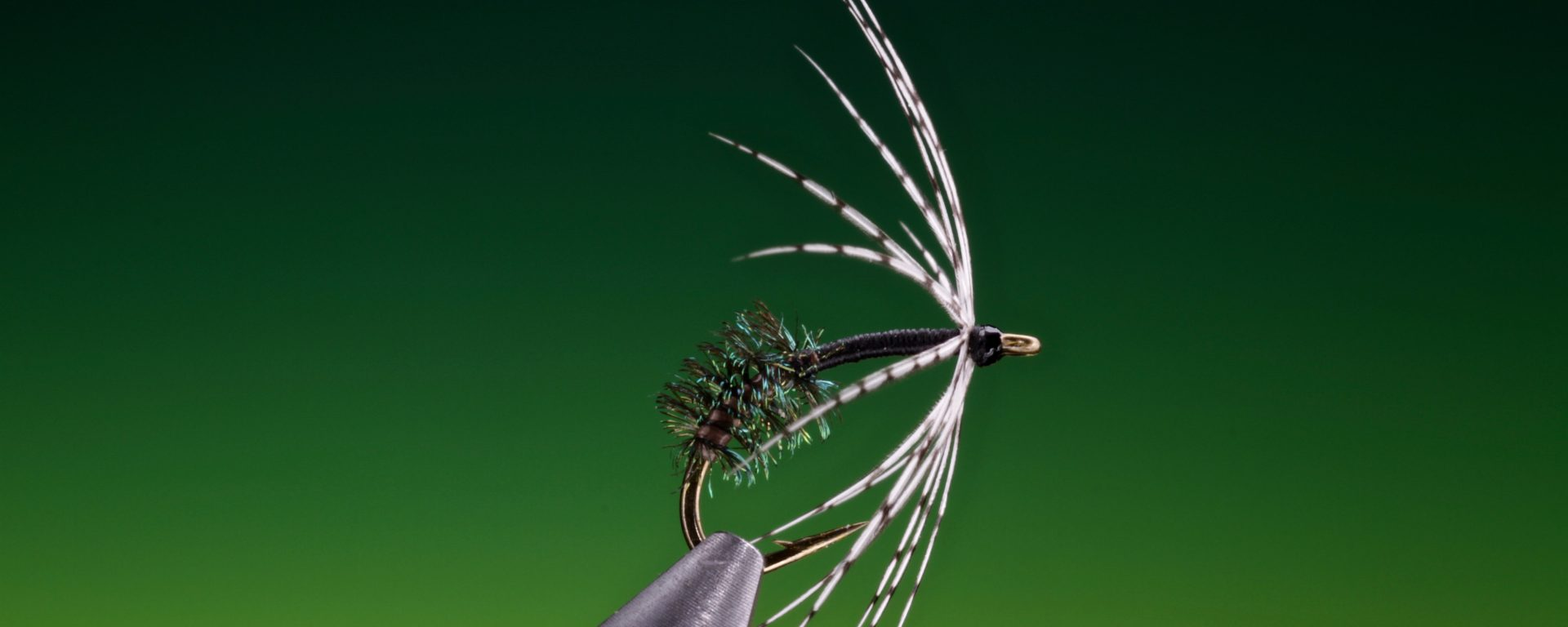 fly tying Peacock and partridge spider wet fly