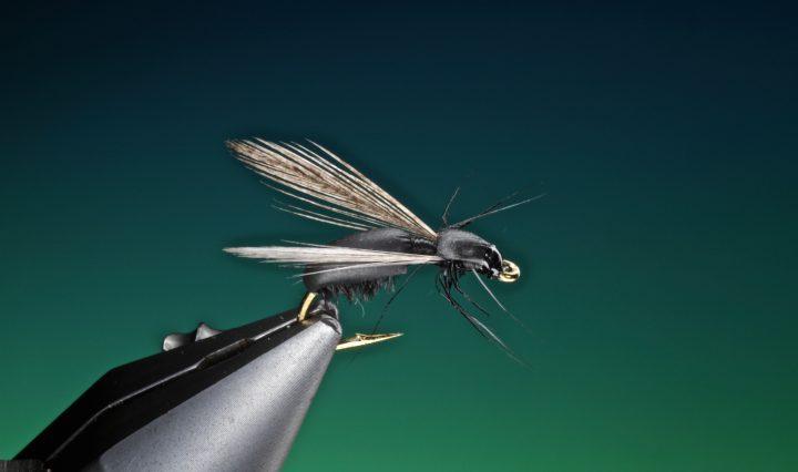 fly tying Float foam ant