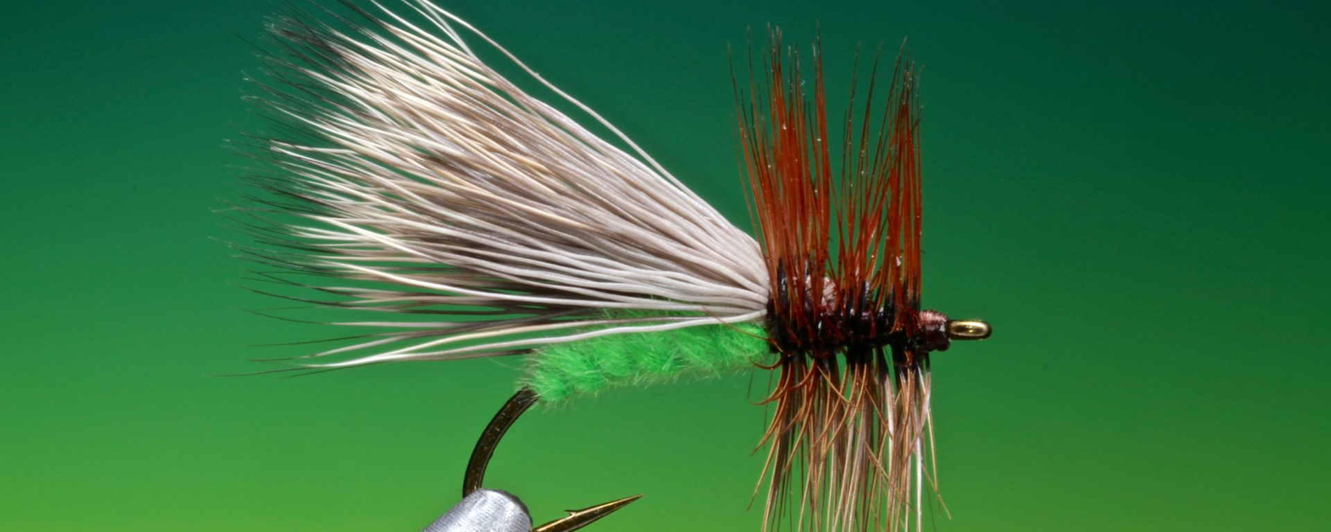 fly tying The fluttering caddis