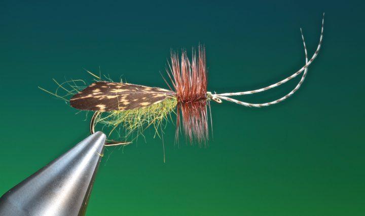 fly tying burnt wing sedge