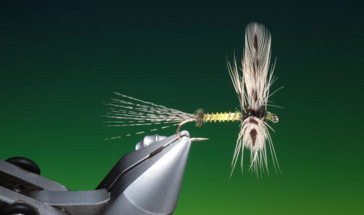 fly tying Spent green drake dry fly