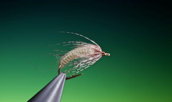 fly tying Antron caddis pupa