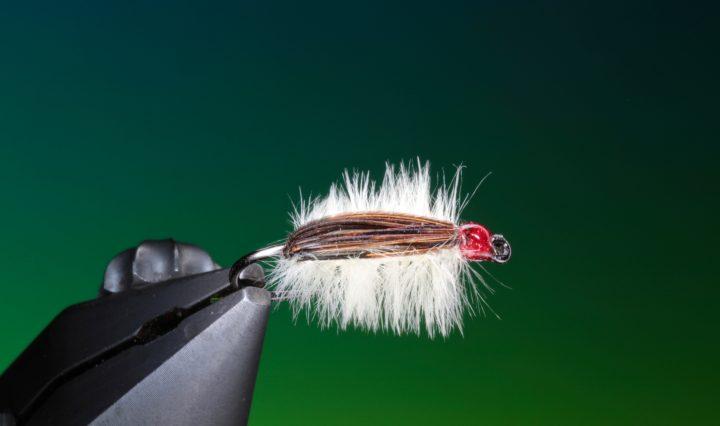 fly tying Chocolate & Vanilla Chomper nymph