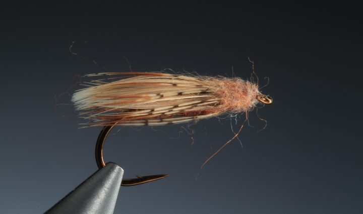 fly tying Diving caddis