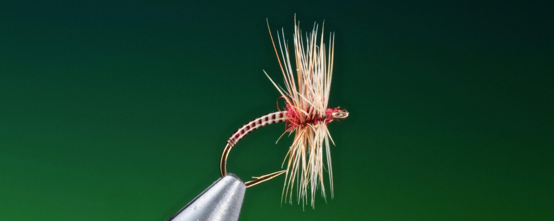 fly tying pay day midge