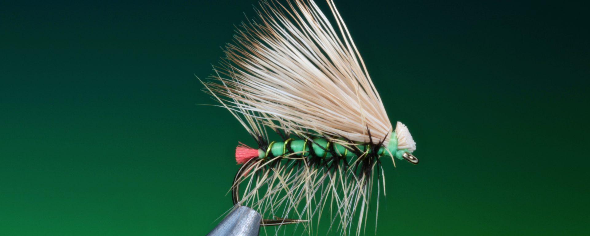 fly tying Hot Butt Caddis