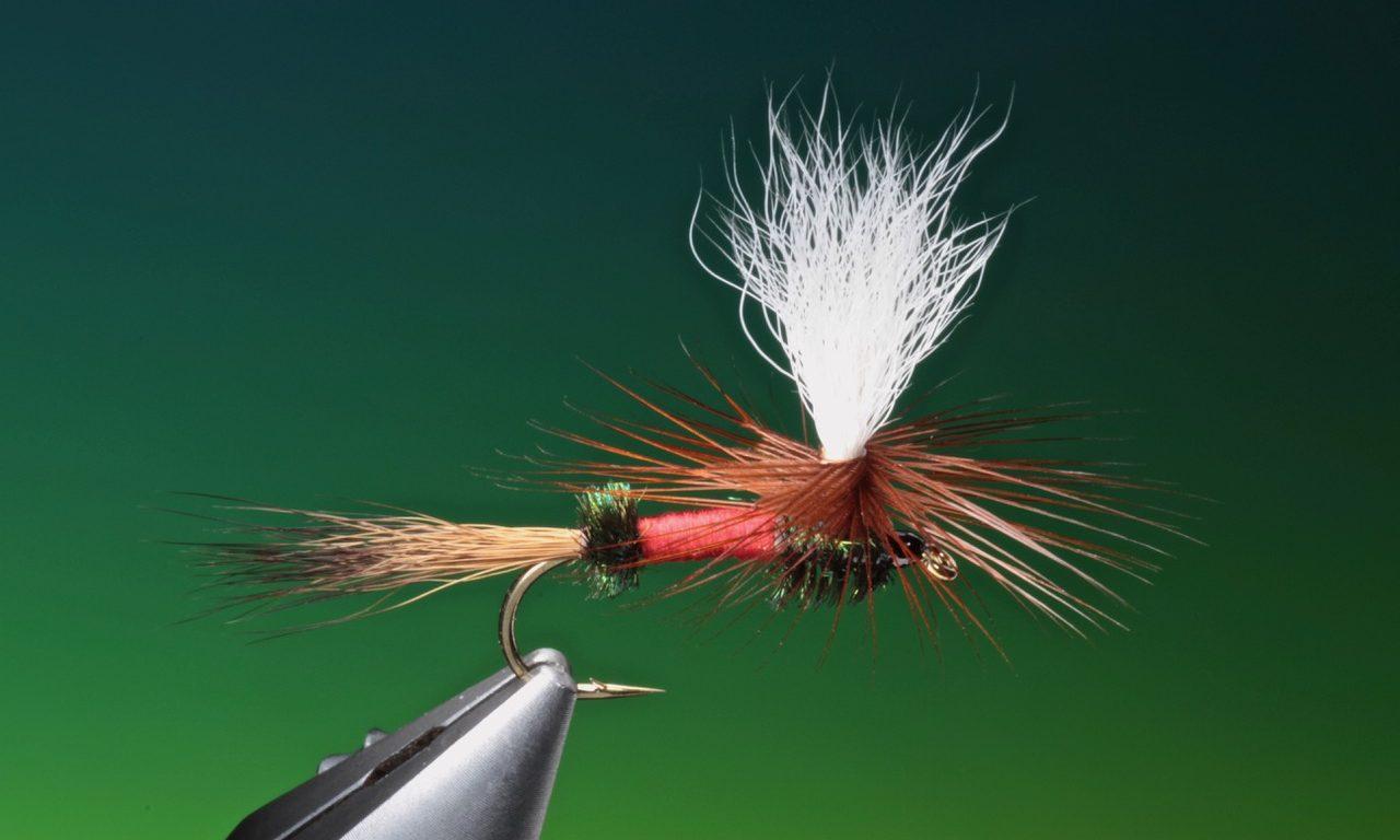 fly tying Parachute Royal Wulff