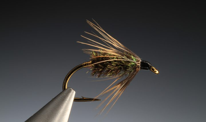 fly tying Coch-y-Bonddu wet fly