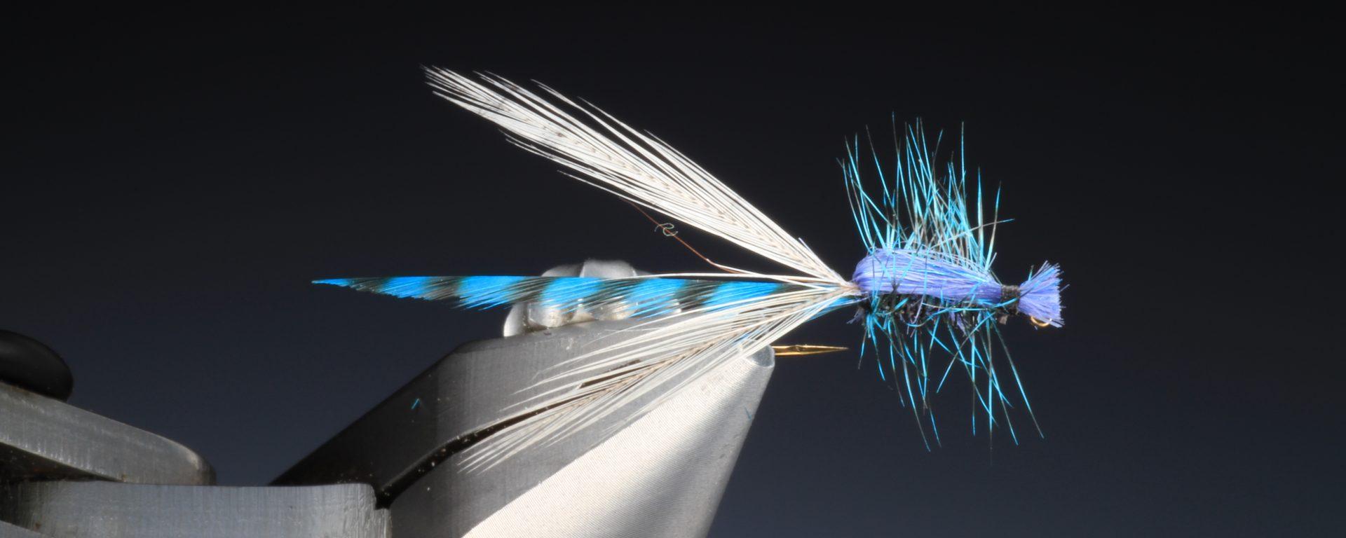 fly tying Adult Blue Damsel