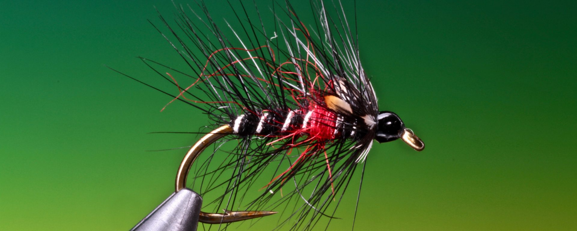 fly tying Bibio & Jungle Bibio