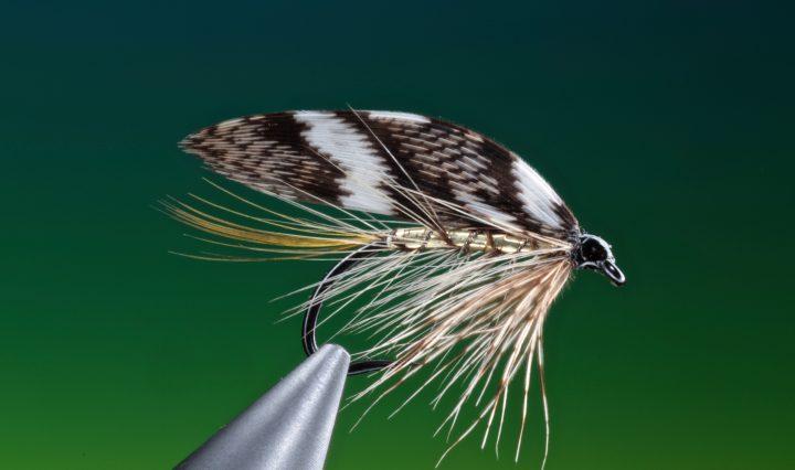 fly tying Ken Sawada wet fly