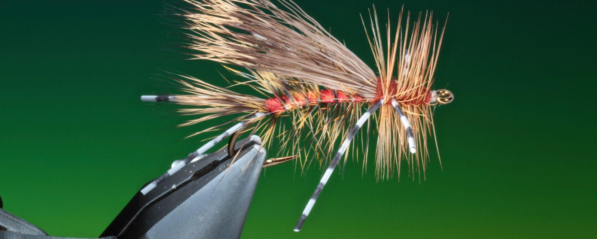 fly tying rubber leg Stimulator