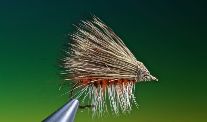 fly tying October Caddis