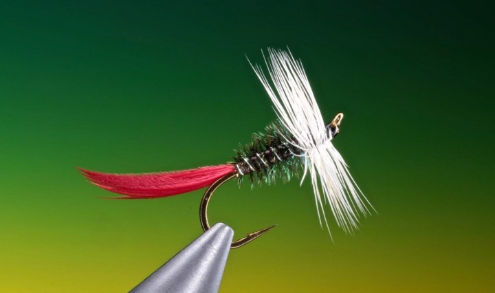 Bristow's Bug dry fly fly tying by Barry Ord Clarke