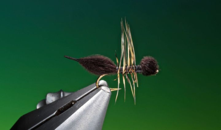 fly tying cdc ant by barry ord clarke